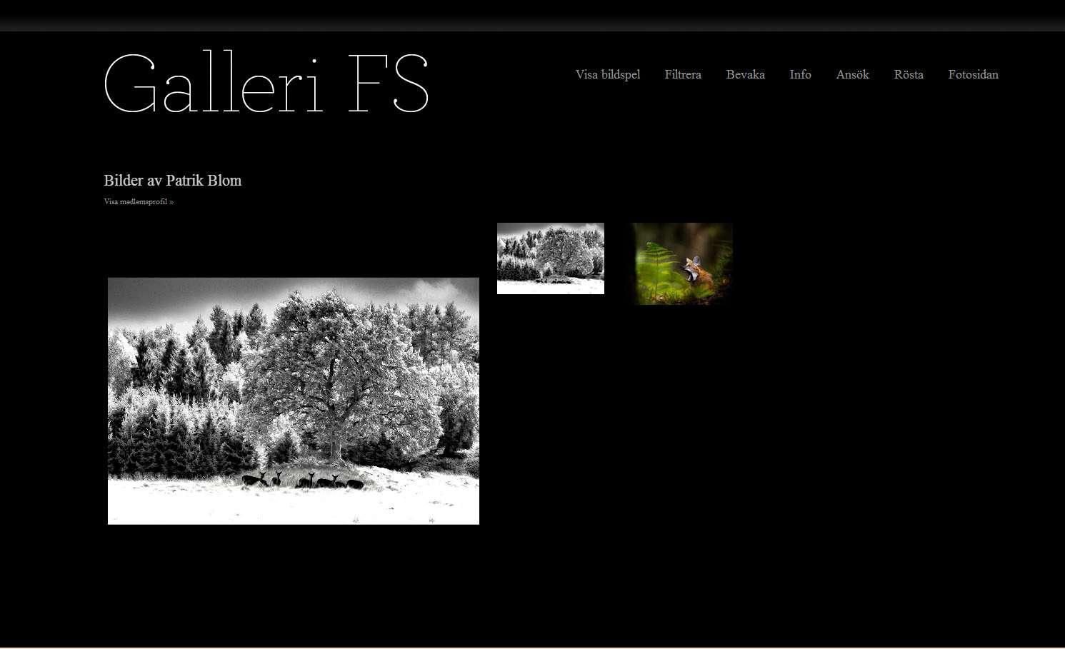 Galleri FS